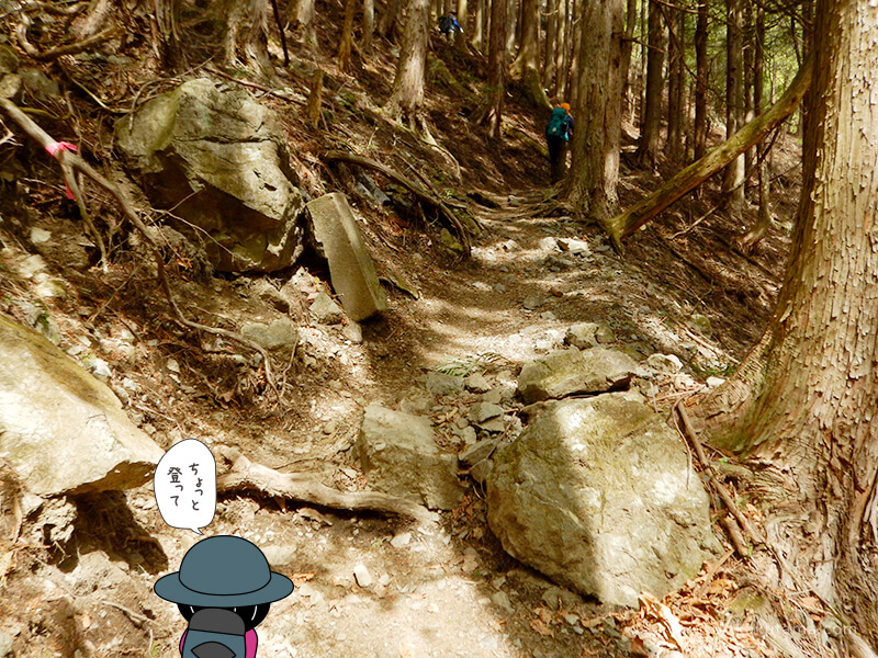 両神山表参道コースの広場から少し登る