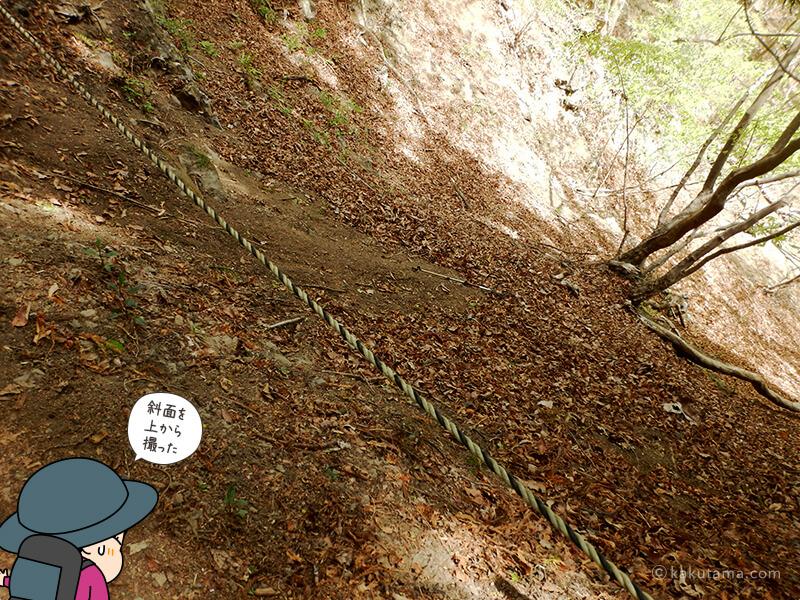 虎の子ロープが張られている