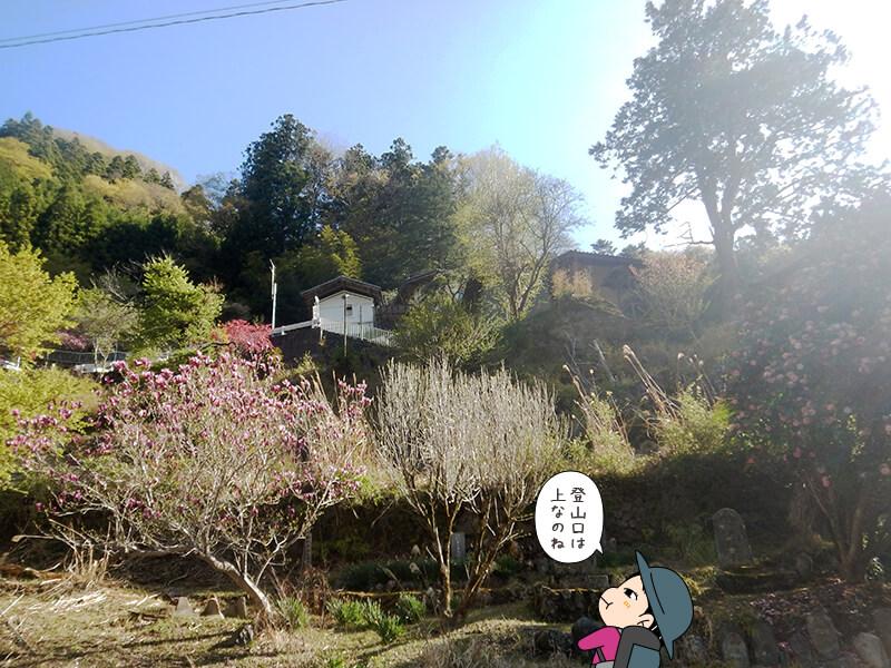 両神山荘を見上げる