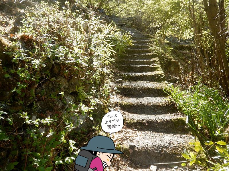 両神山荘への階段2