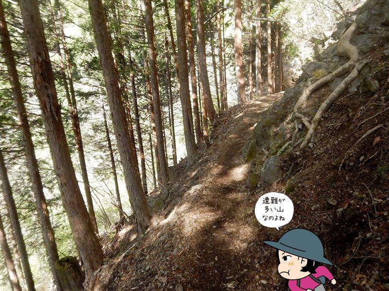日向大谷の登山道1