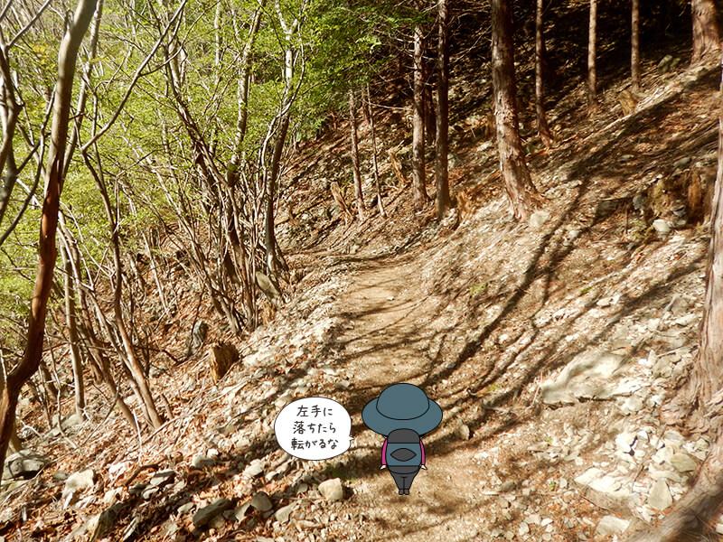 日向大谷の登山道4