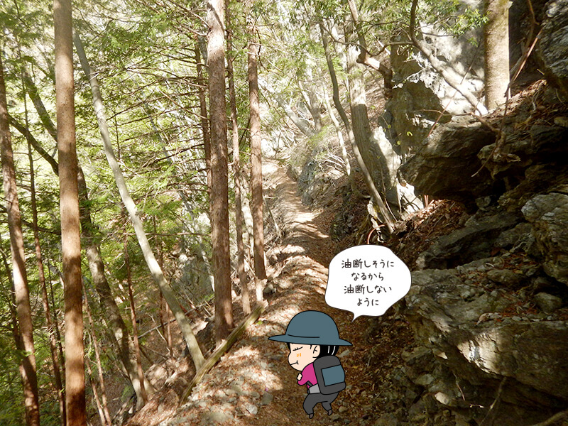 日向大谷の登山道5