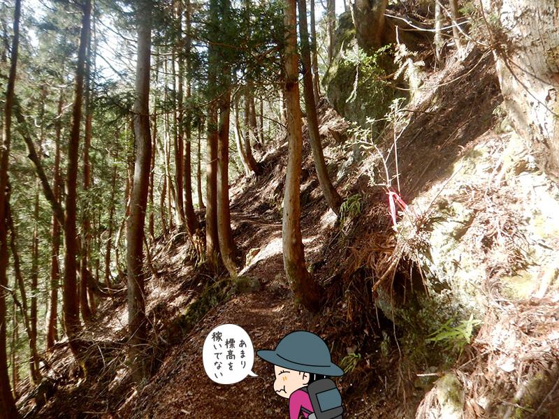 日向大谷の登山道7