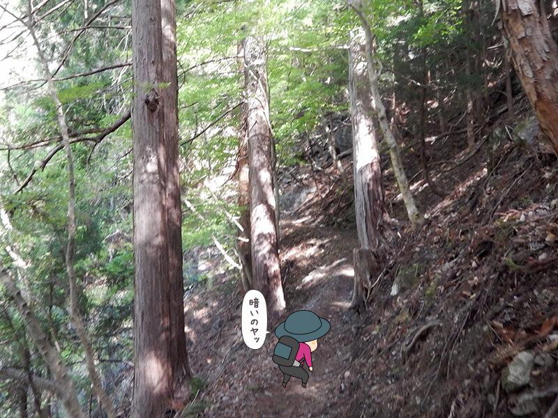 日向大谷の登山道9