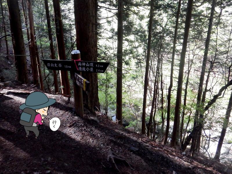 七滝沢と表参道コースの分岐