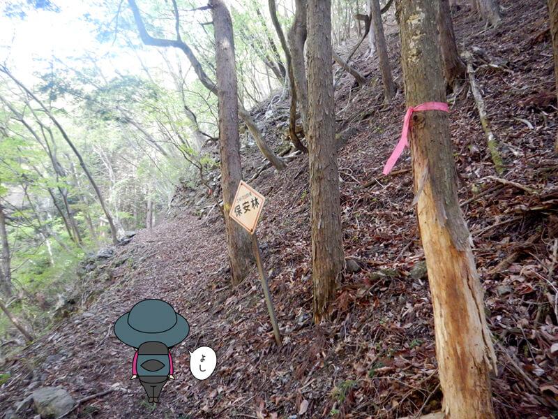 七滝沢コースへ入った