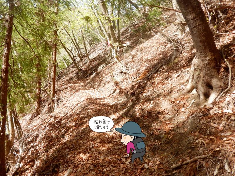枯れ葉で滑りやすい