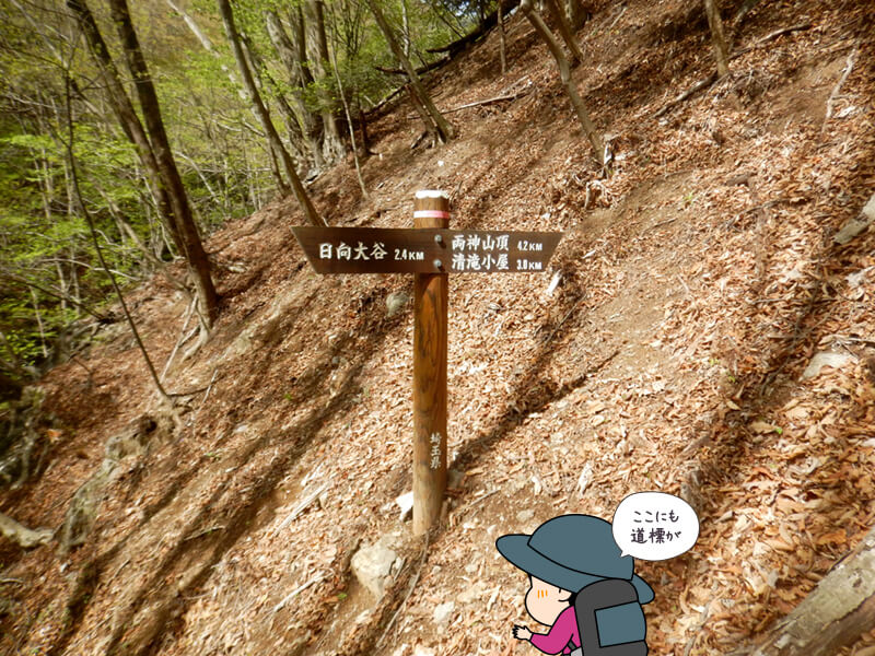 標識の多い七滝沢コース2