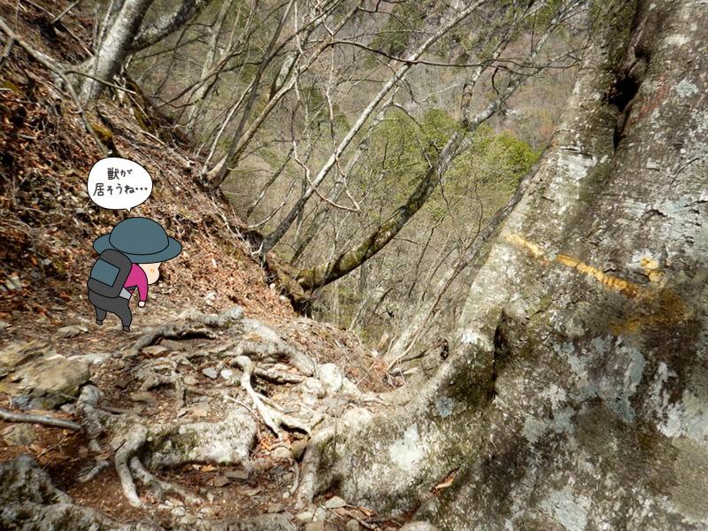 上りが続く七滝沢コース2
