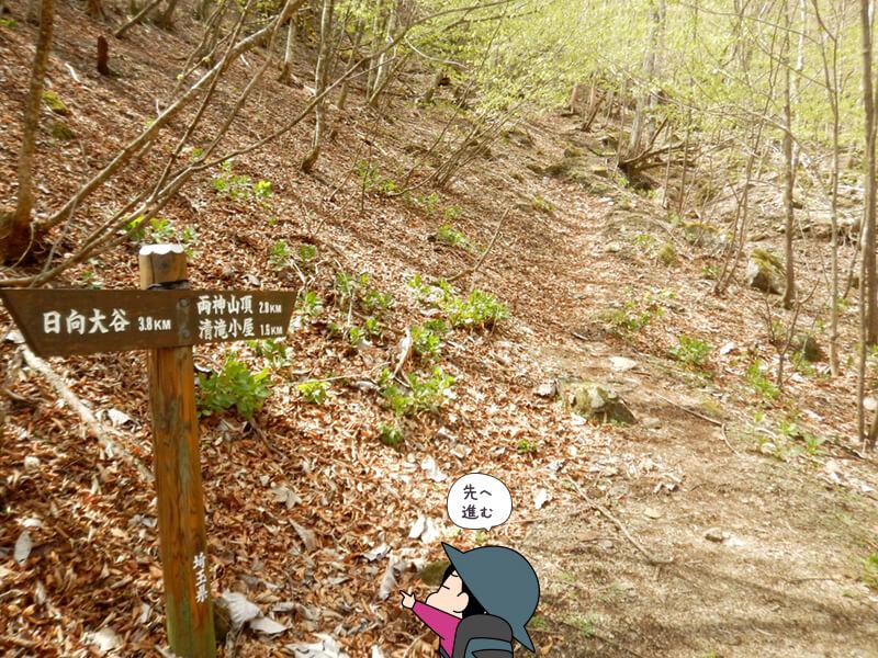 赤滝コースから七滝沢コースへ戻る