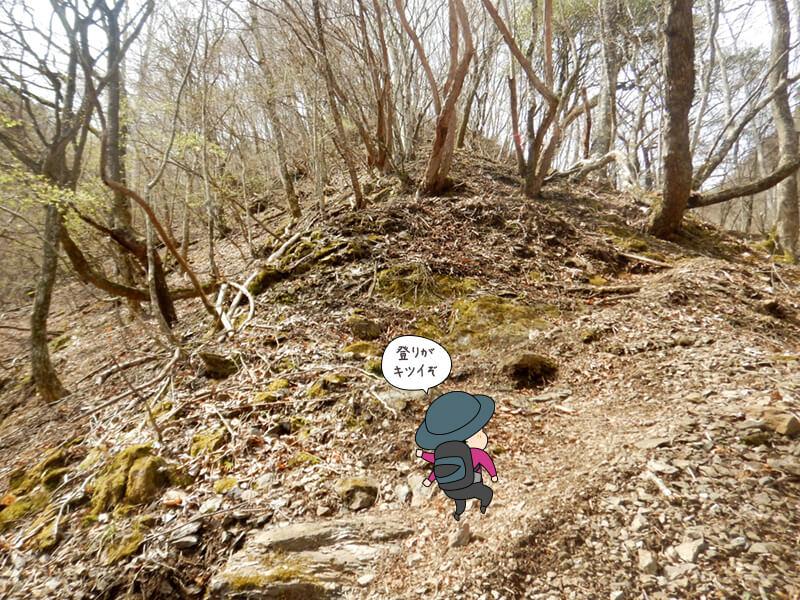 七滝沢コースの登りは続く2