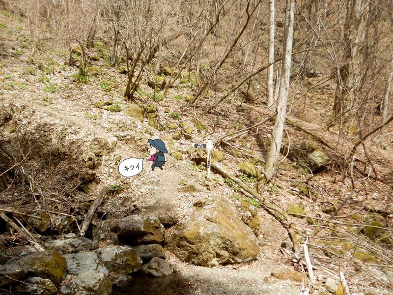 七滝沢コースの登りは続く3
