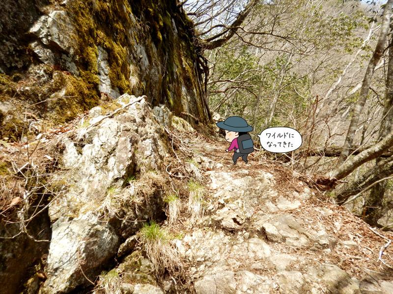 七滝沢コースもそろそろ終盤