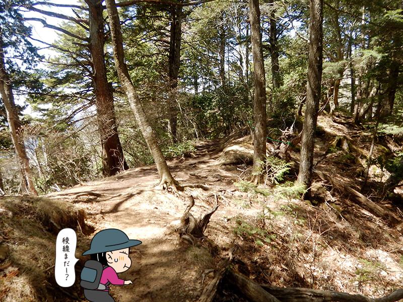 両神神社から山頂へ向かって歩く3