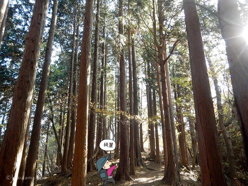 栗の木洞から寄方面へ進む