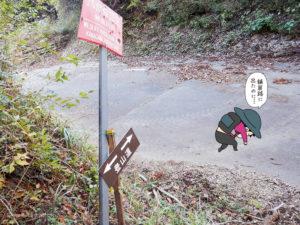 舗装路を通過