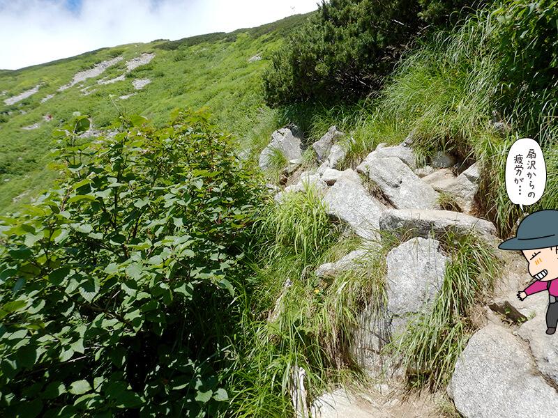 岩場を越えて登る
