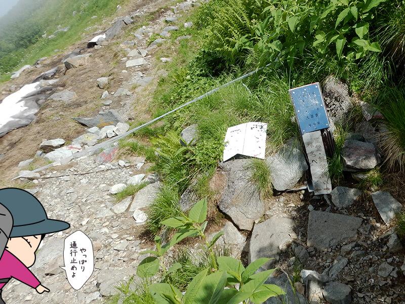 本当の奥大日岳の最高地点の分岐