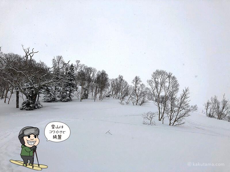 真っ白な山