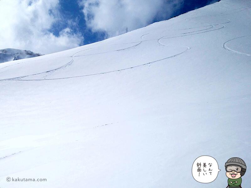 真っ白な斜面を見る