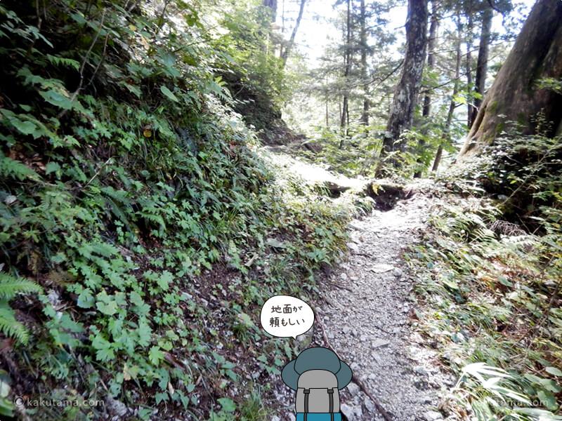 水平な登山道
