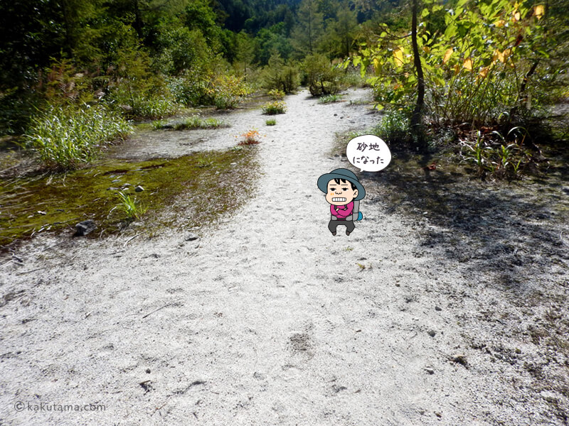 砂地になった登山道