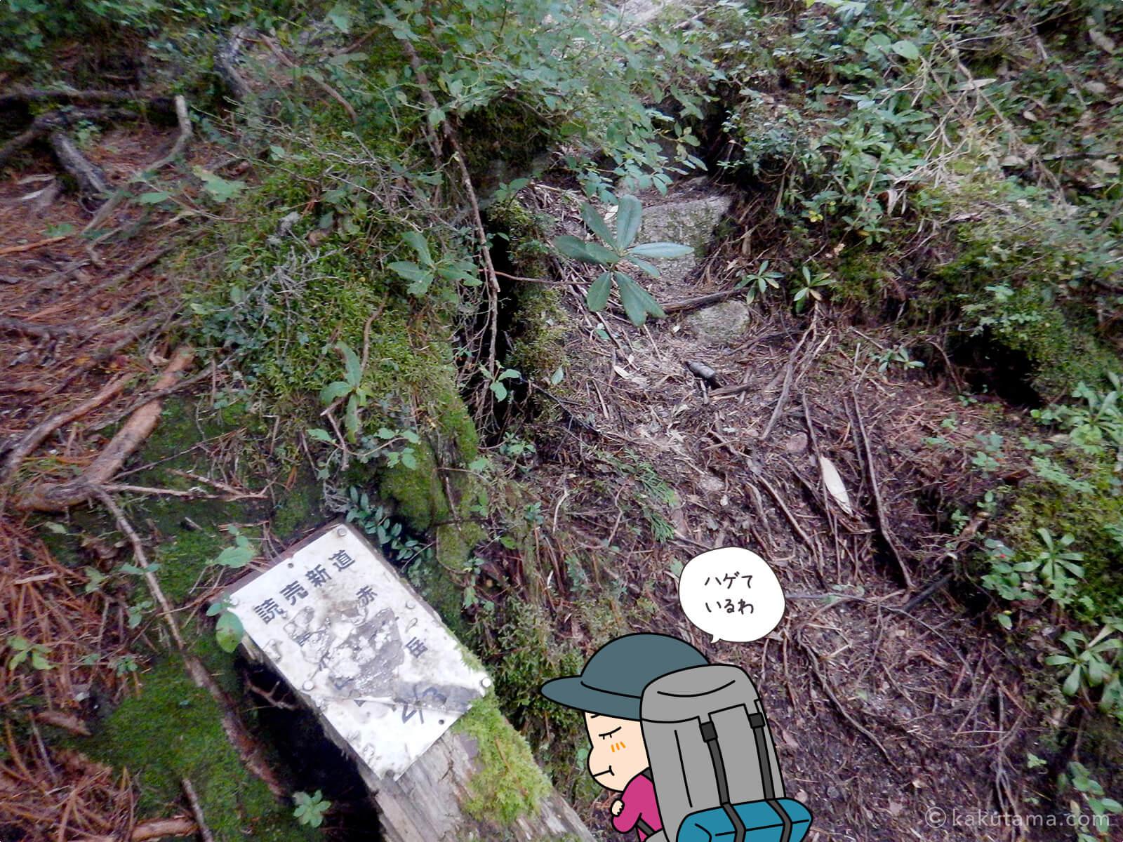 読売新道2/3の看板