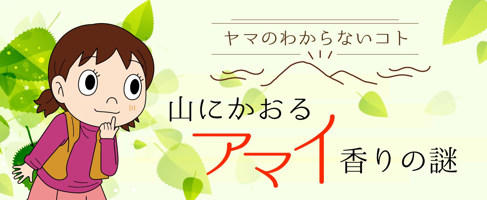 山に香る甘い匂いの正体は桂の木タイトル