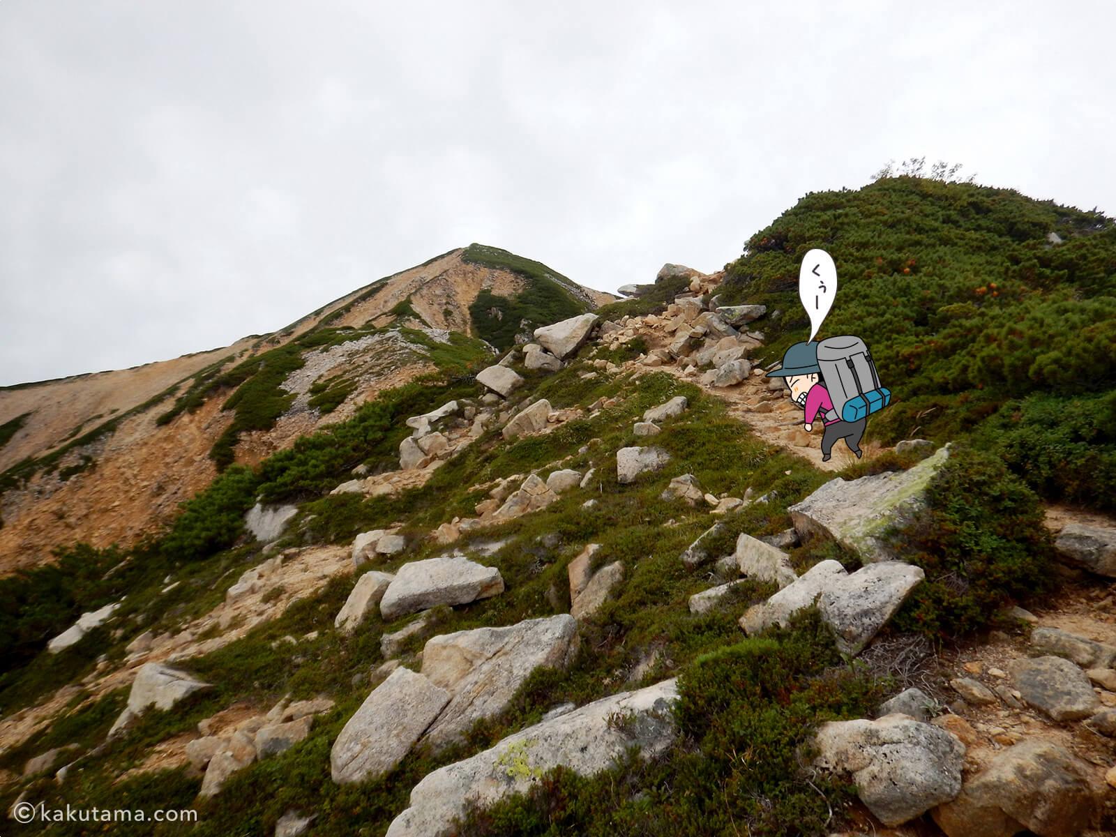赤牛岳最後の登りが辛い1