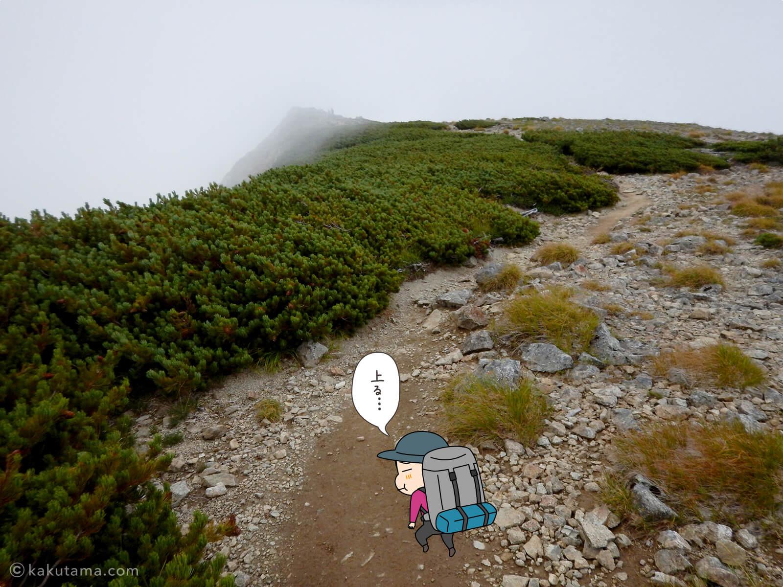 ガスった水晶岳から水晶小屋までの登山道2
