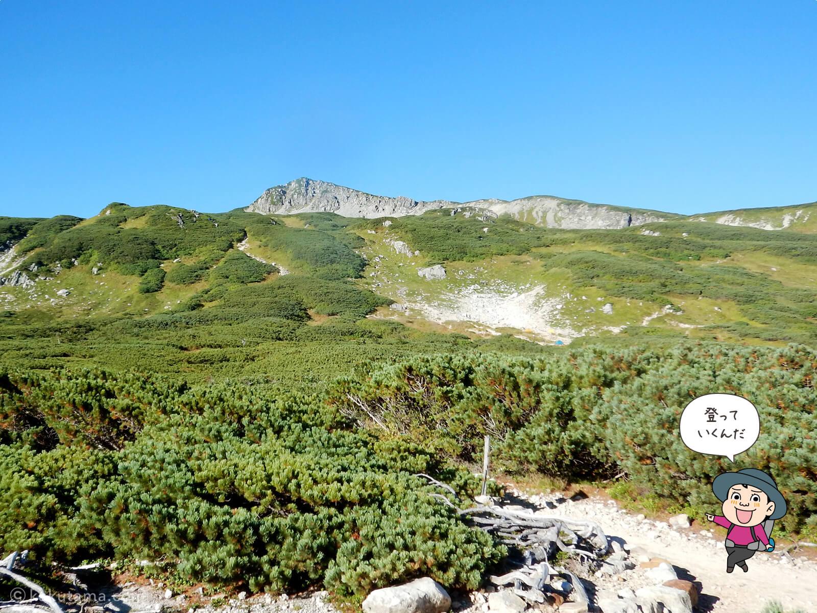 三俣山荘から三俣蓮華岳を見上げる