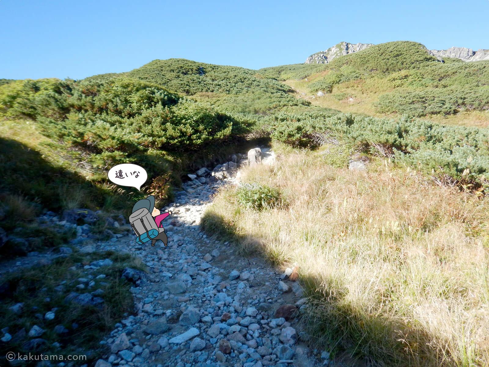 三俣山荘からの登り6
