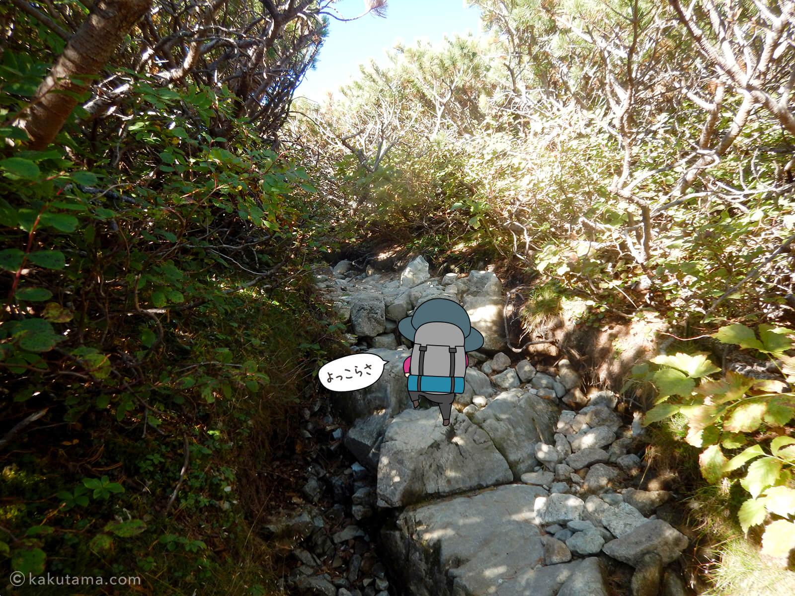 石畳を登る