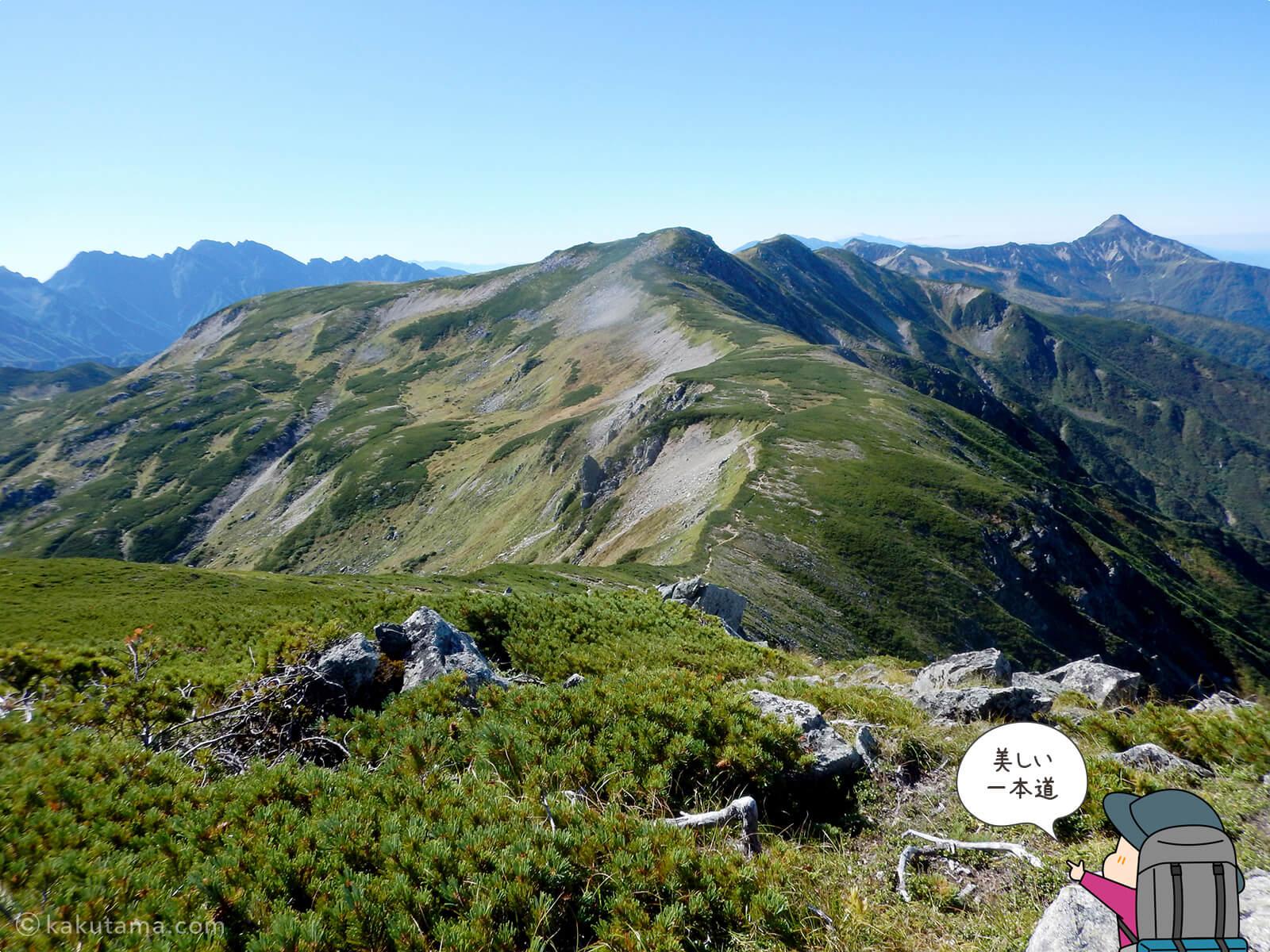 双六岳への稜線登り2