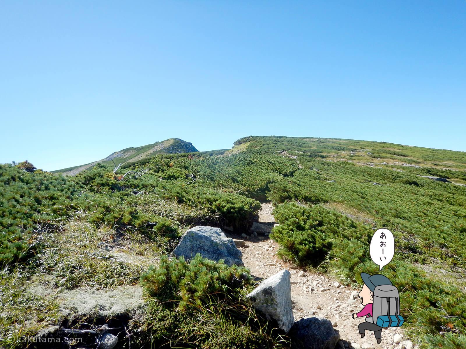 双六岳への稜線登り3