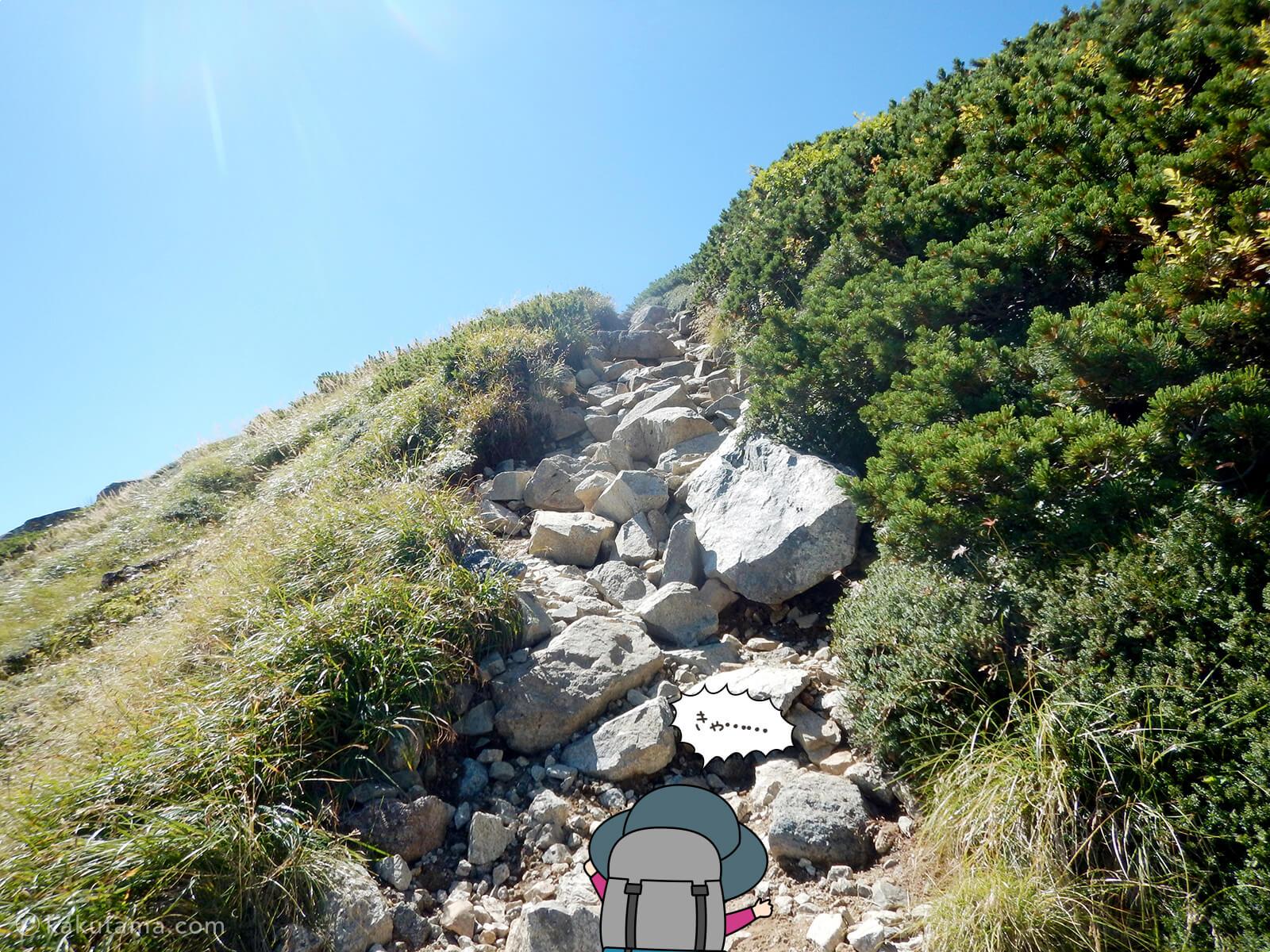 双六岳へ向かって登る2