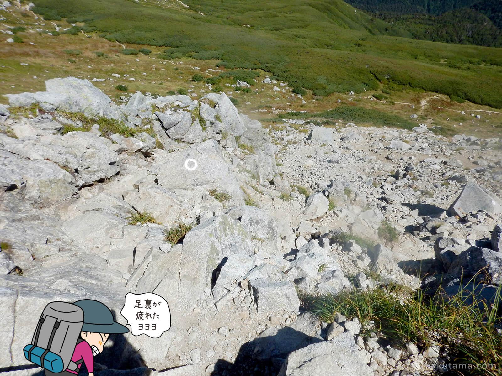 双六岳から下山2