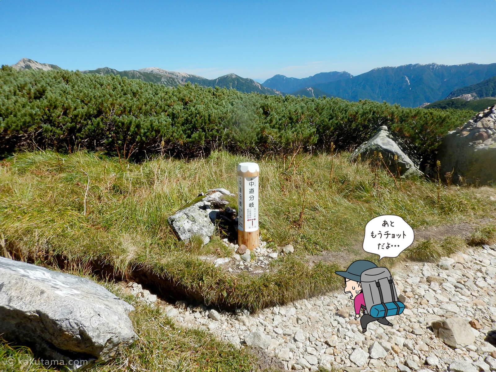 双六岳中道と合流