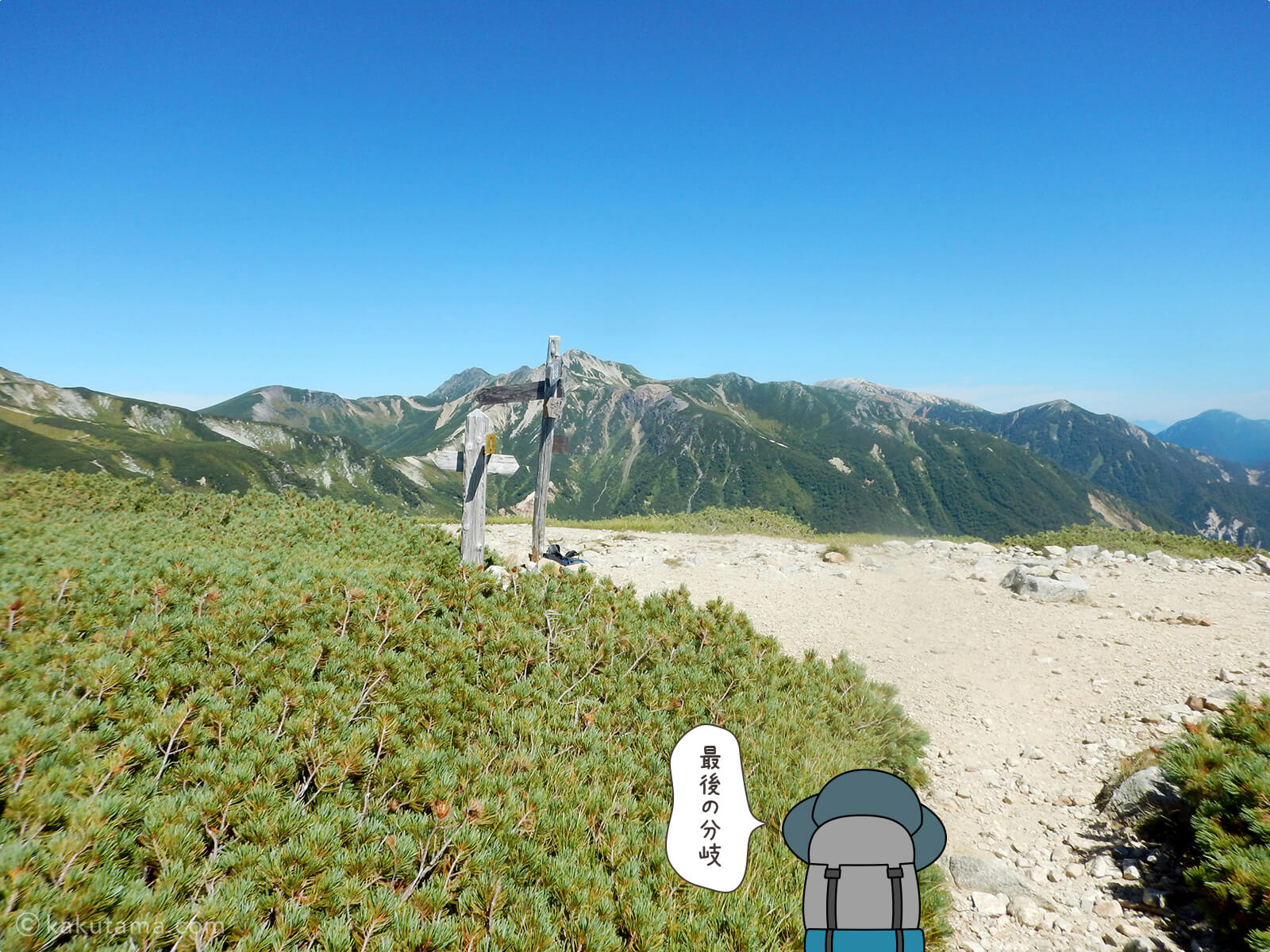 双六岳巻道との合流地点