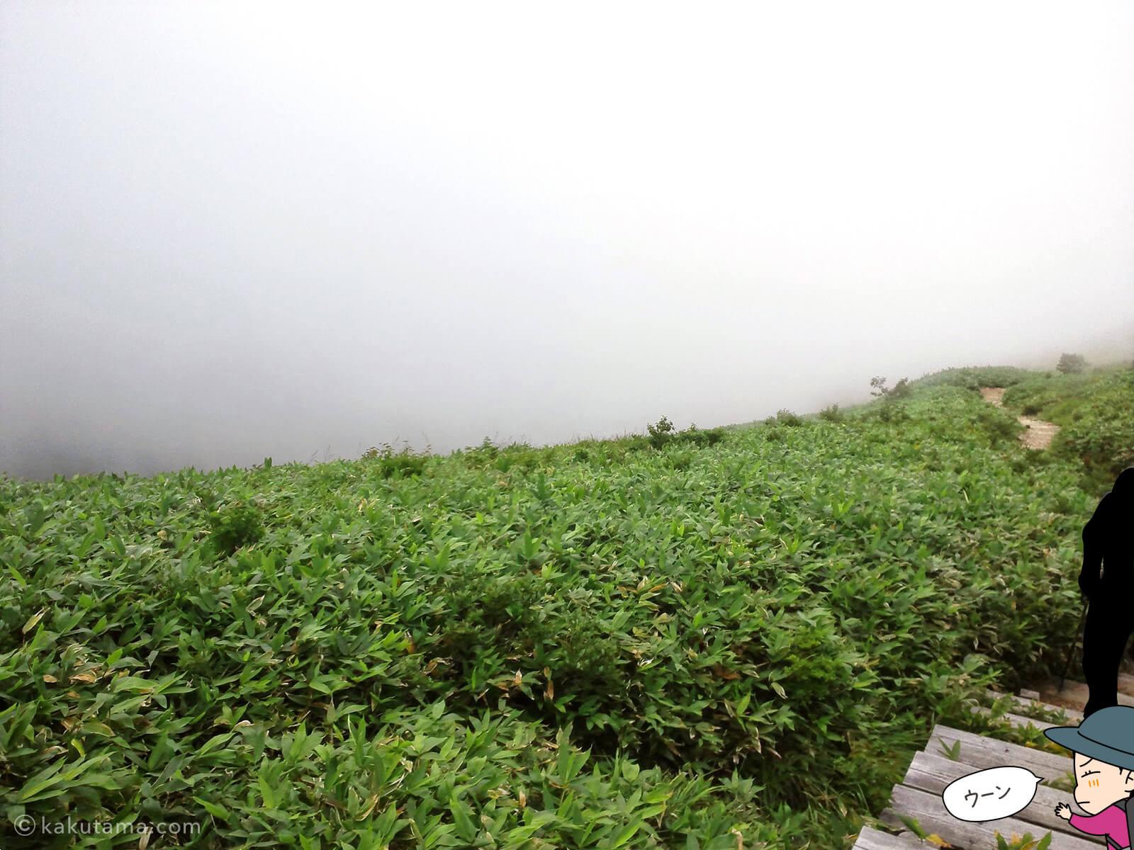 平標山の登り