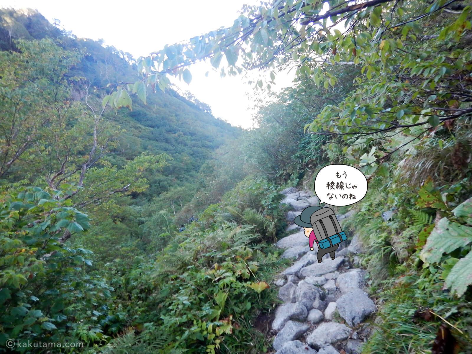 鏡平山荘から小池新道で下る