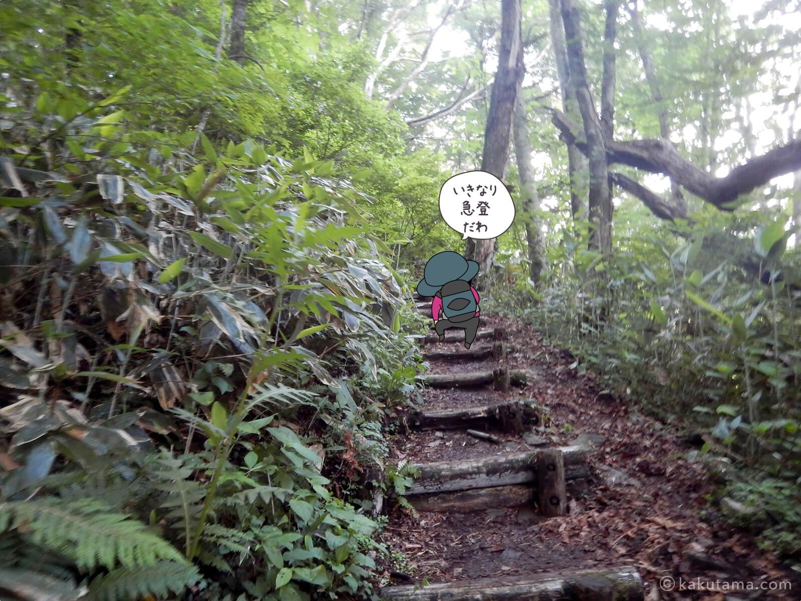 松手山登山コースを登る1