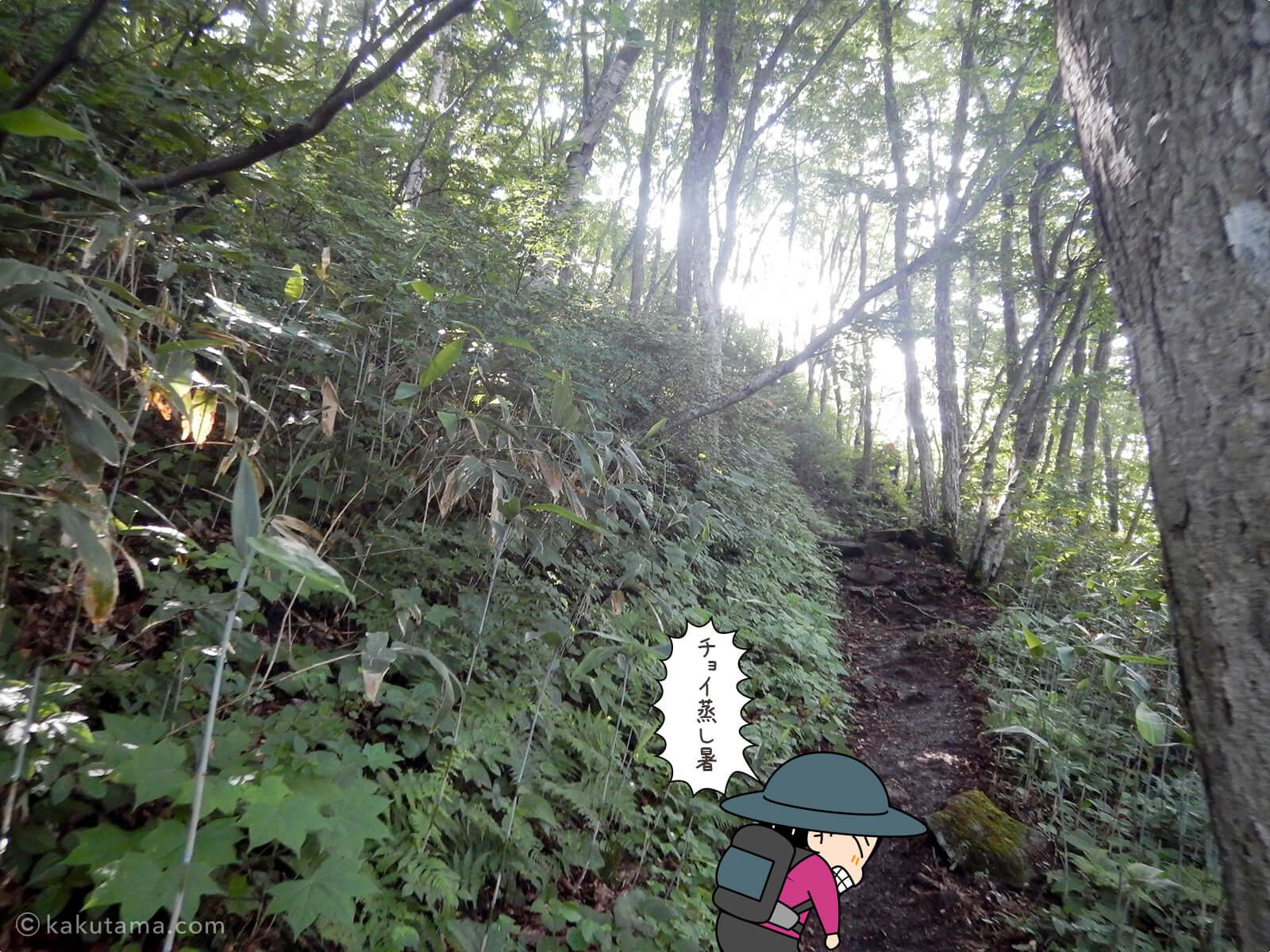 松手山登山コースを登る2