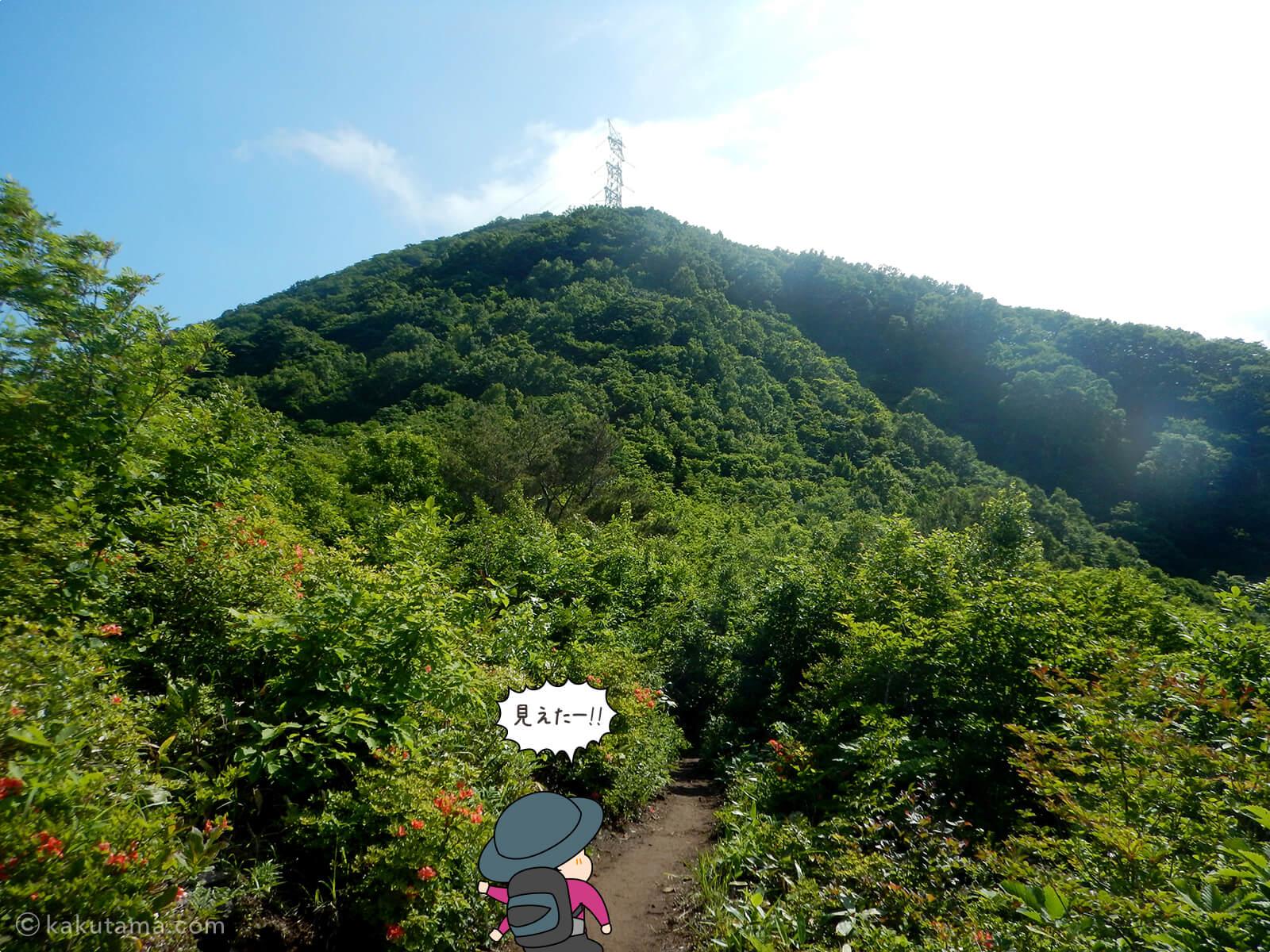 鉄塔が見えた