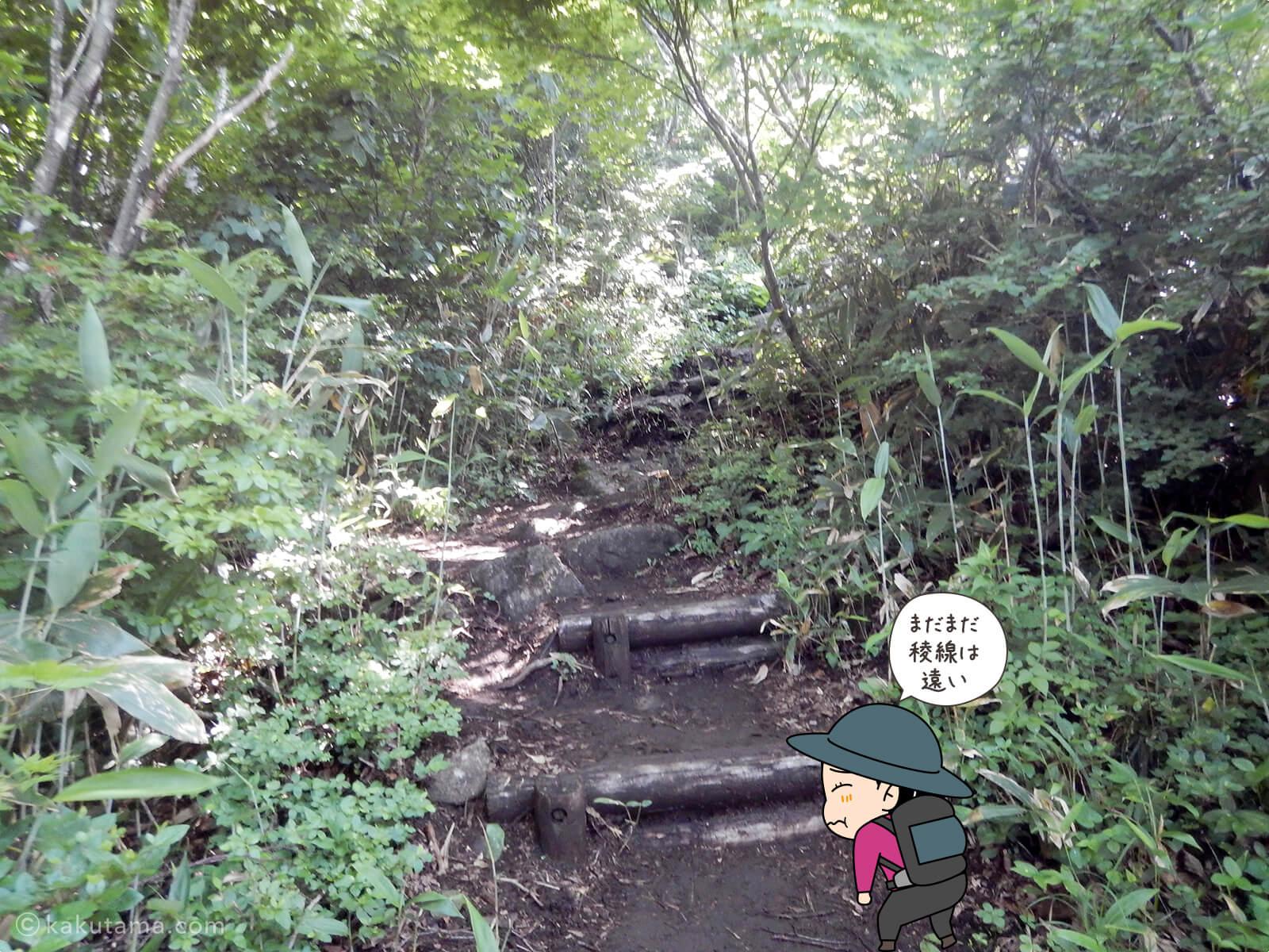松手山登山コースを登る6