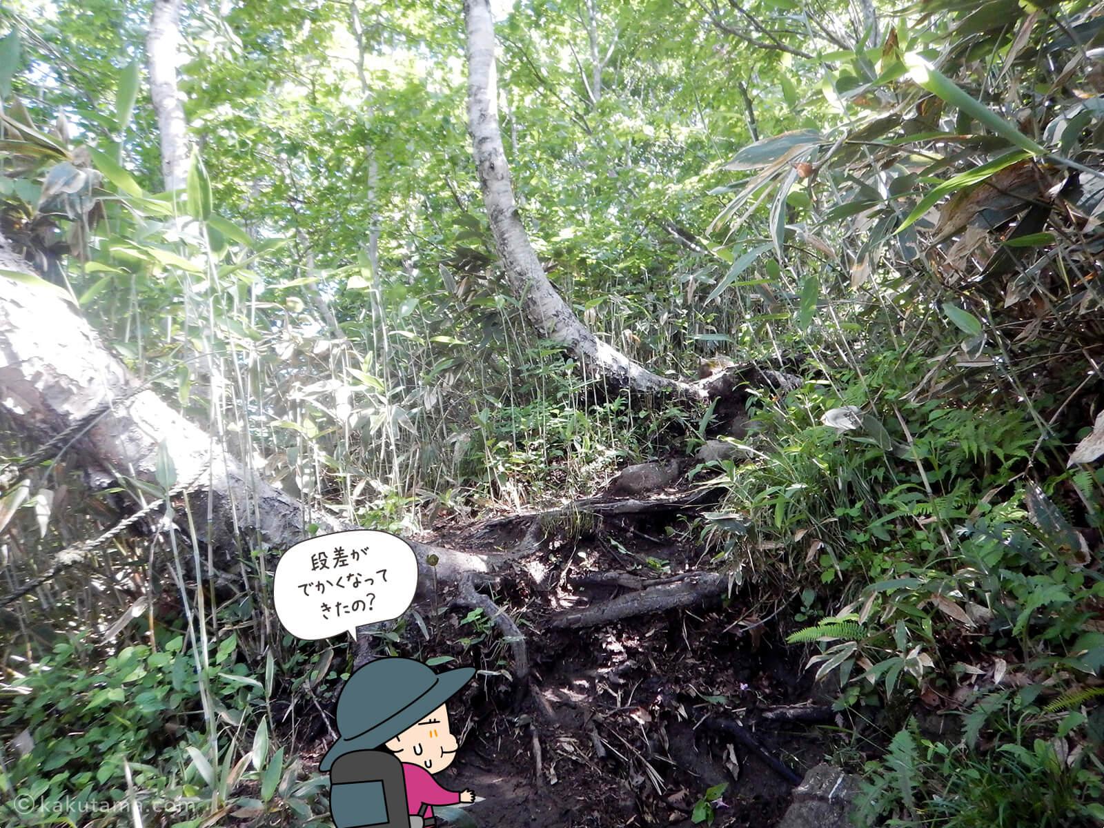 松手山登山コースを登る7