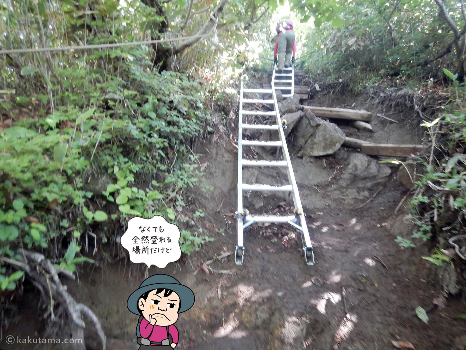 はしごが登場