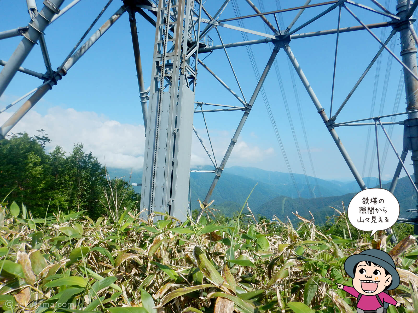 鉄塔から山々を見る