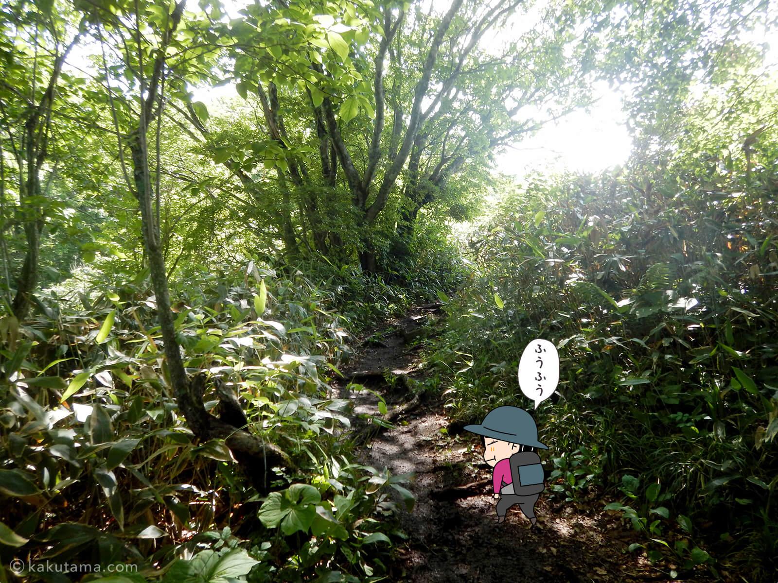 松手山登山コースを登る10